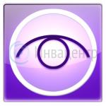 Программа экранного доступа с синтезом речи Window-Eyes