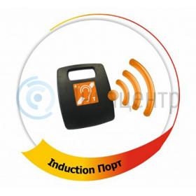 Портативная индукционная система Induction Порт