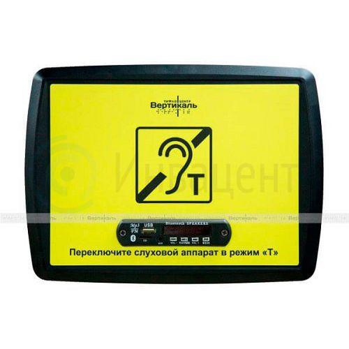 Индукционная портативная система VERT-1 MP3